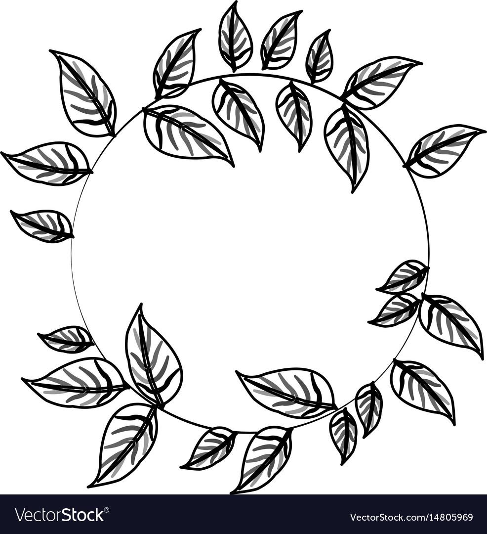 Leaf or leaves icon image