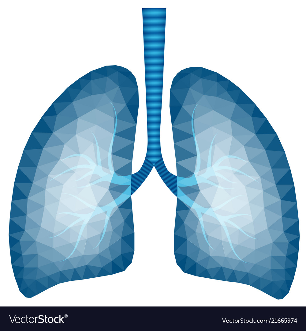 Abstract polygonal image of human lungs
