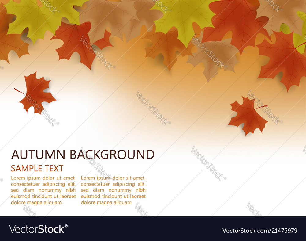 Autumn background decor with autumn maple leaves