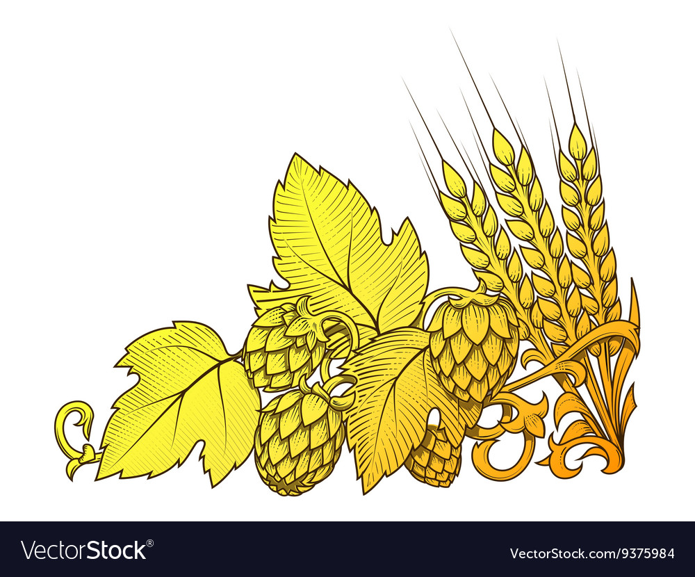 Hops and barley ornament