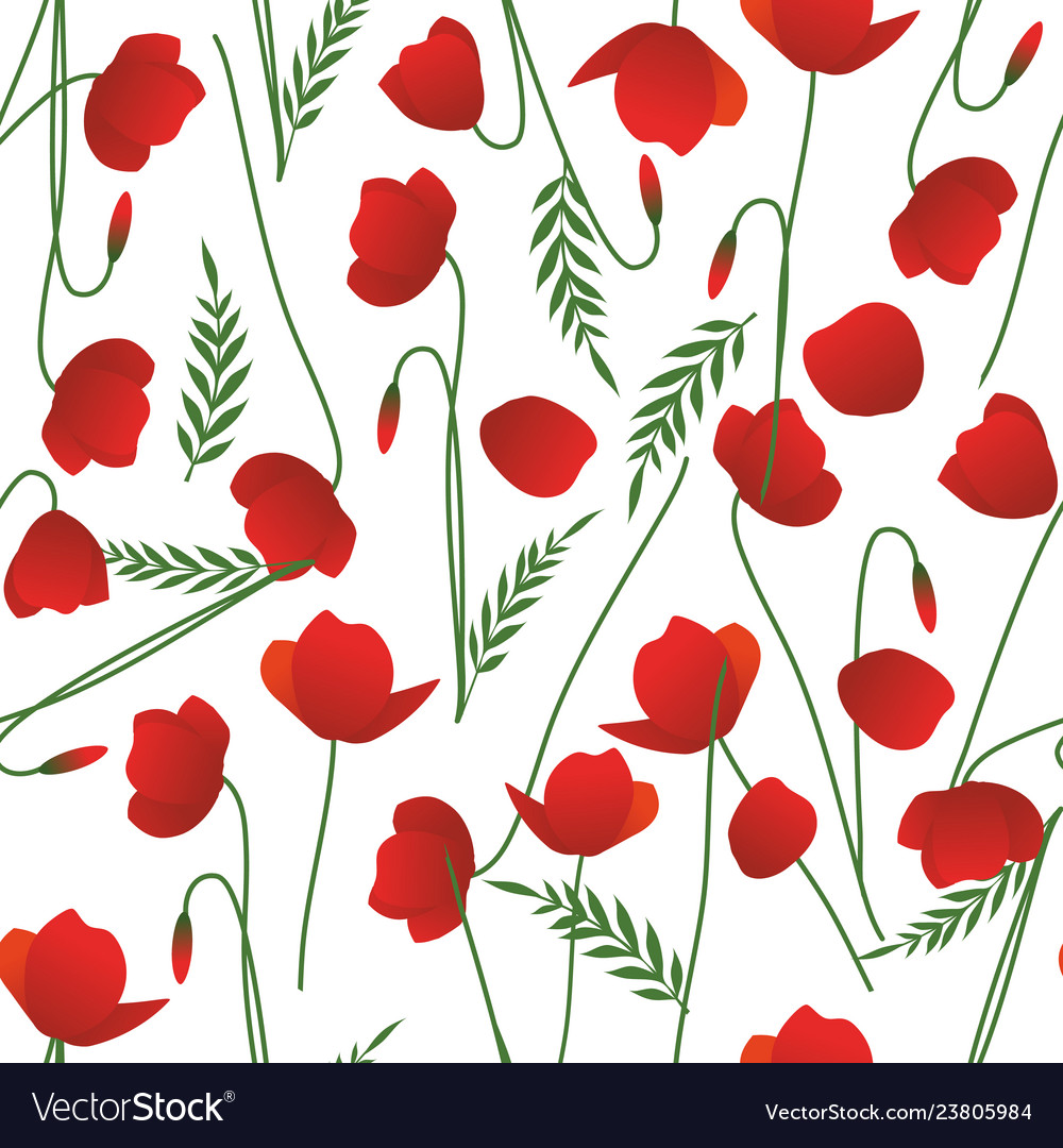 Seamless pattern of poppy stems leaves and