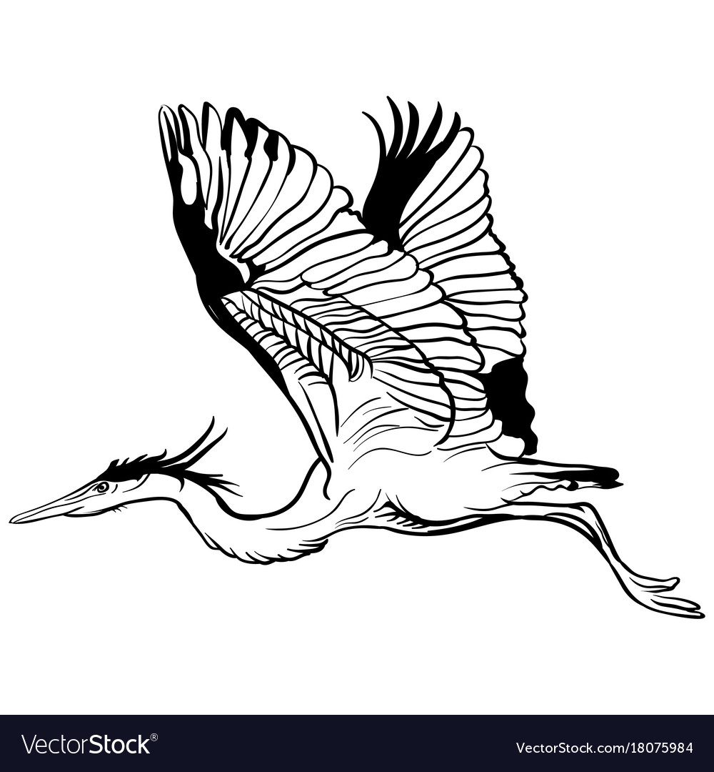 Tattoo sketch flying stork