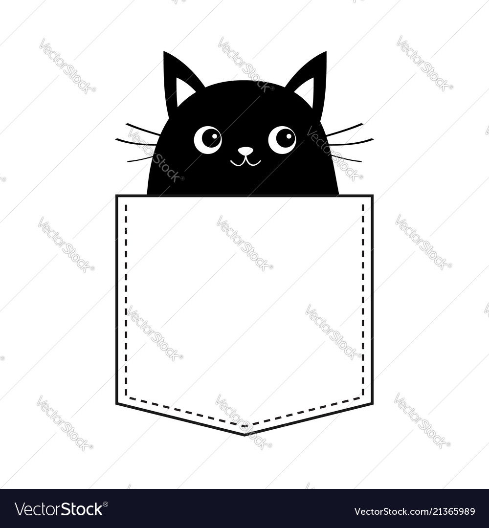 Black cat in the pocket moustaches cute cartoon