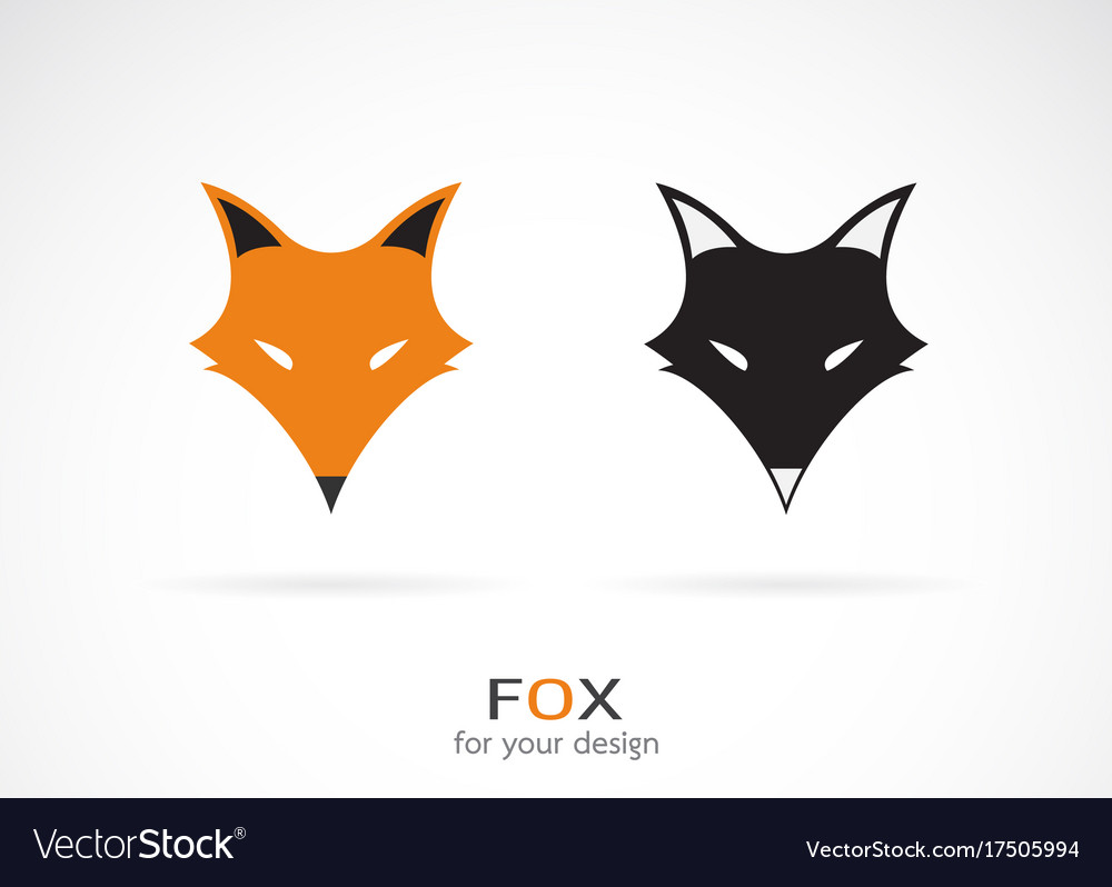 Fox face design on white background wild