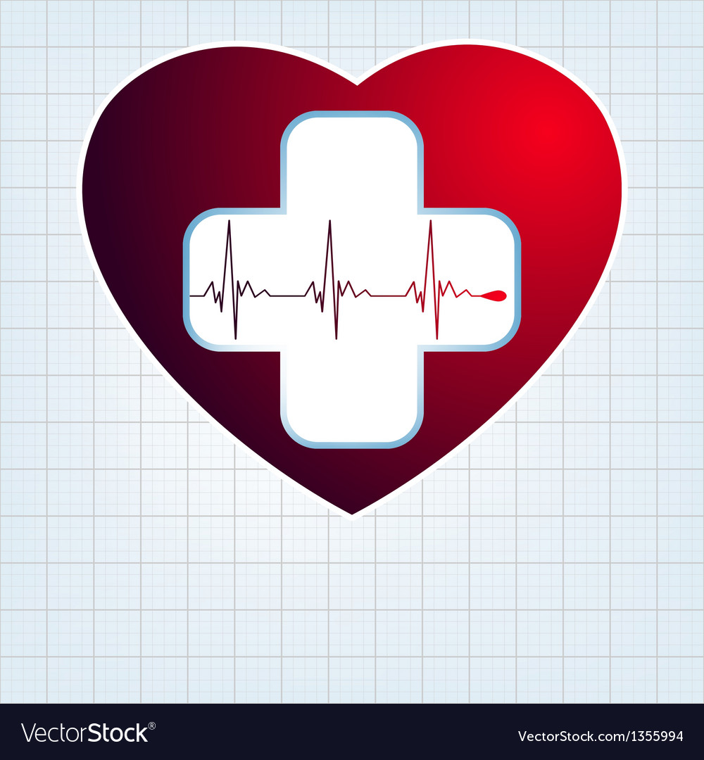 Heart with cardiogram EPS 10 vector image
