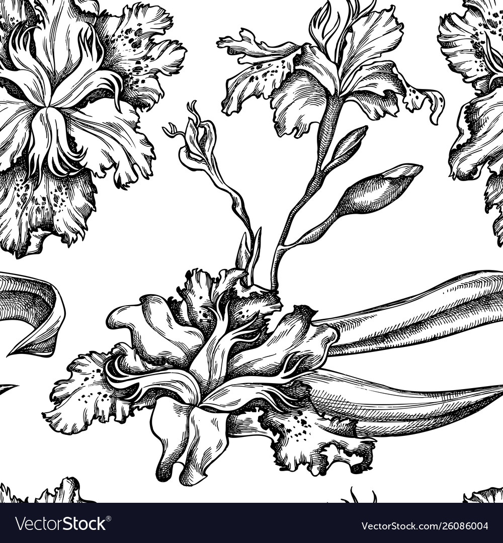 Seamless pattern with black and white iris