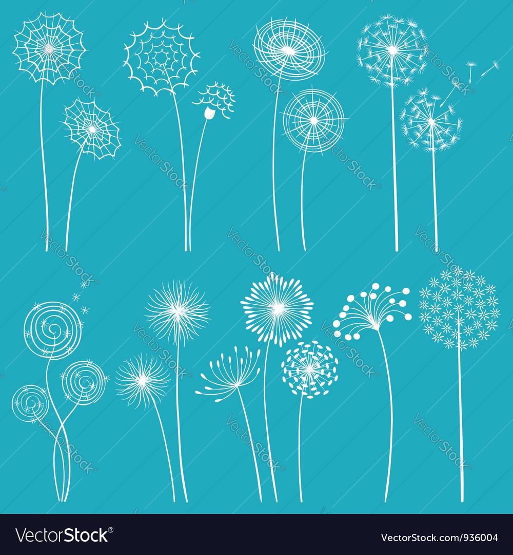 Set of dandelions vector image