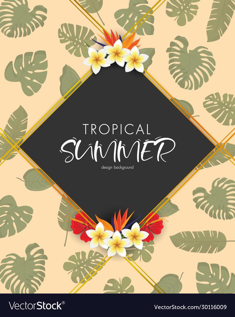 Tropical summer frame design background