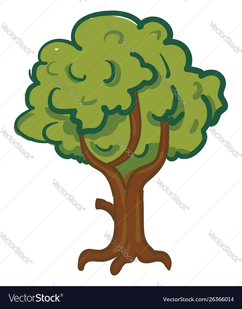 A Tree Cartoon Or Color Royalty Free Vector Image We have created this video to get learn your kids how to draw tree with color names easy steps for kids education | funny drawing tree 2020 with sounds. vectorstock