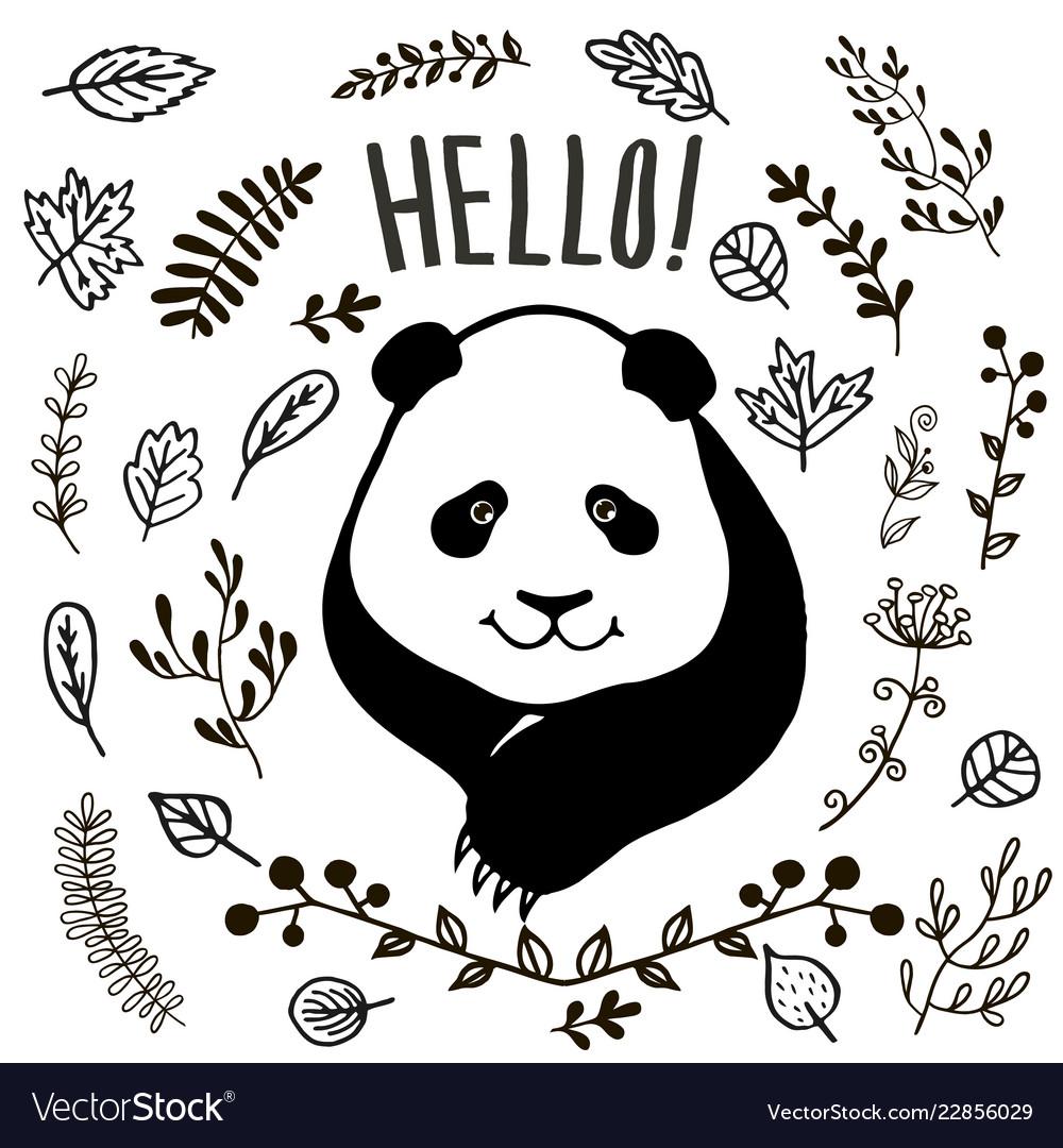Hand drawn cute panda