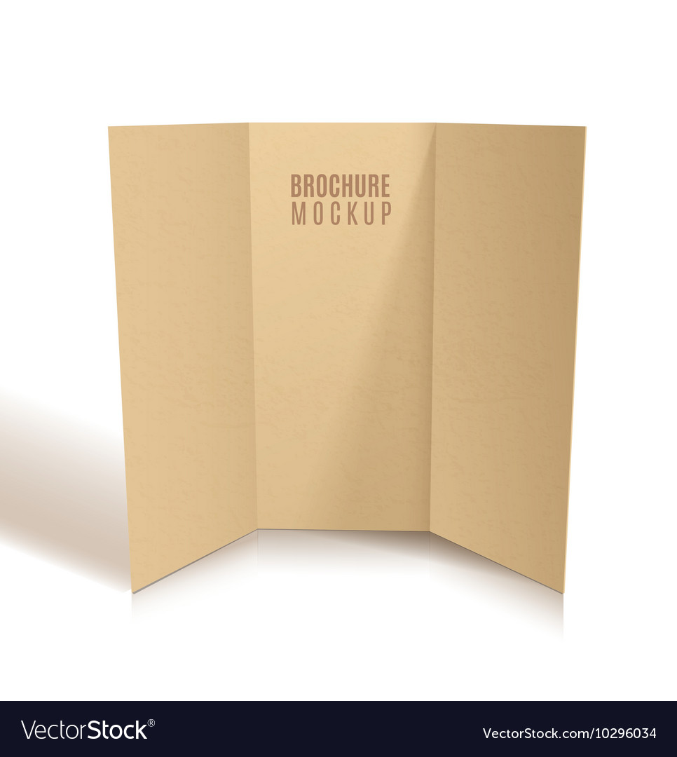 blank tri fold brochure design isolated royalty free vector