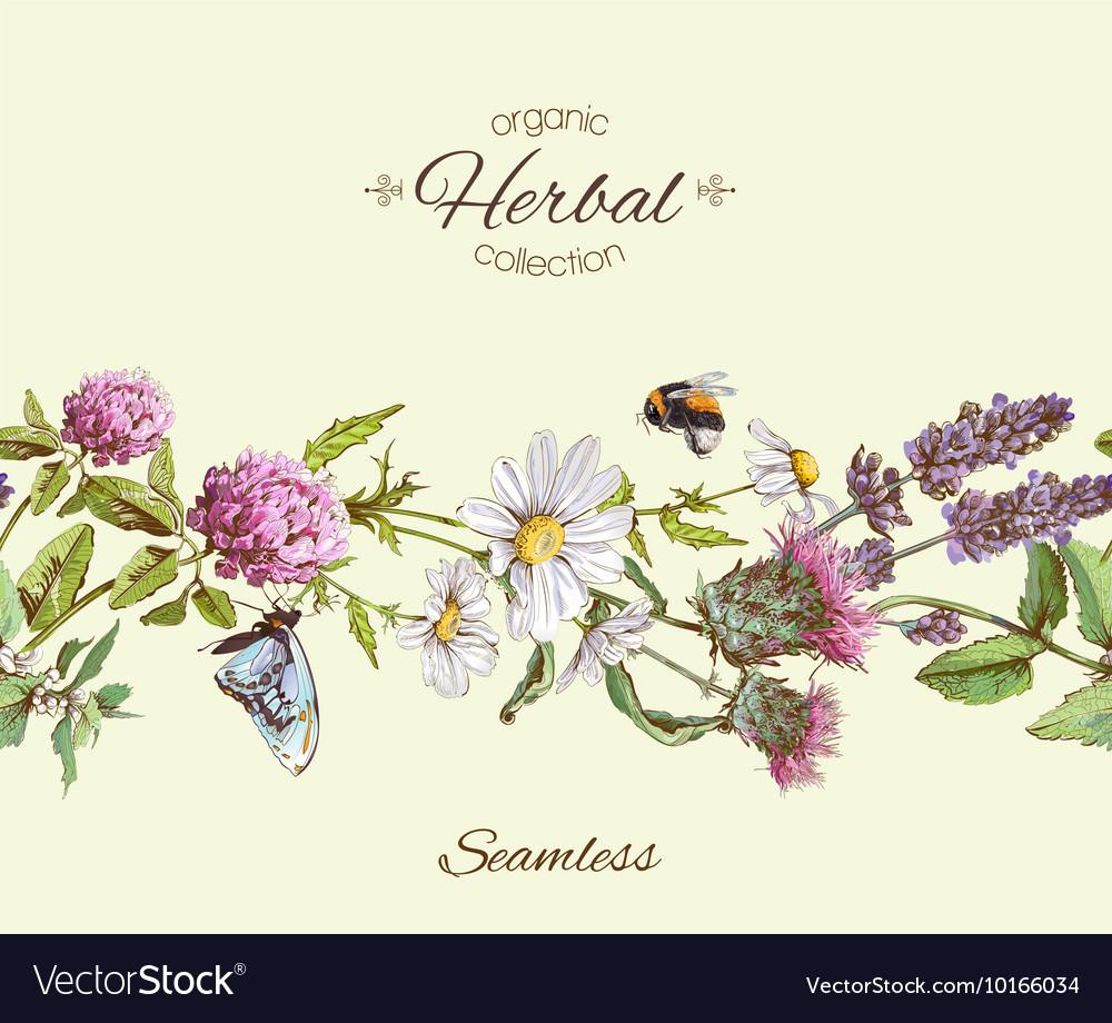 Herbal seamless border