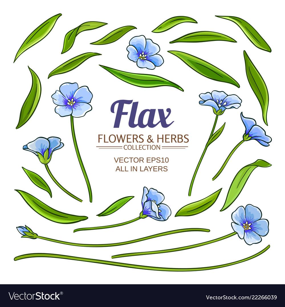 Flax plant elements set