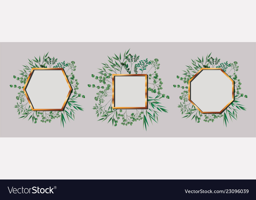 Set of geometrics golden frames and leafs