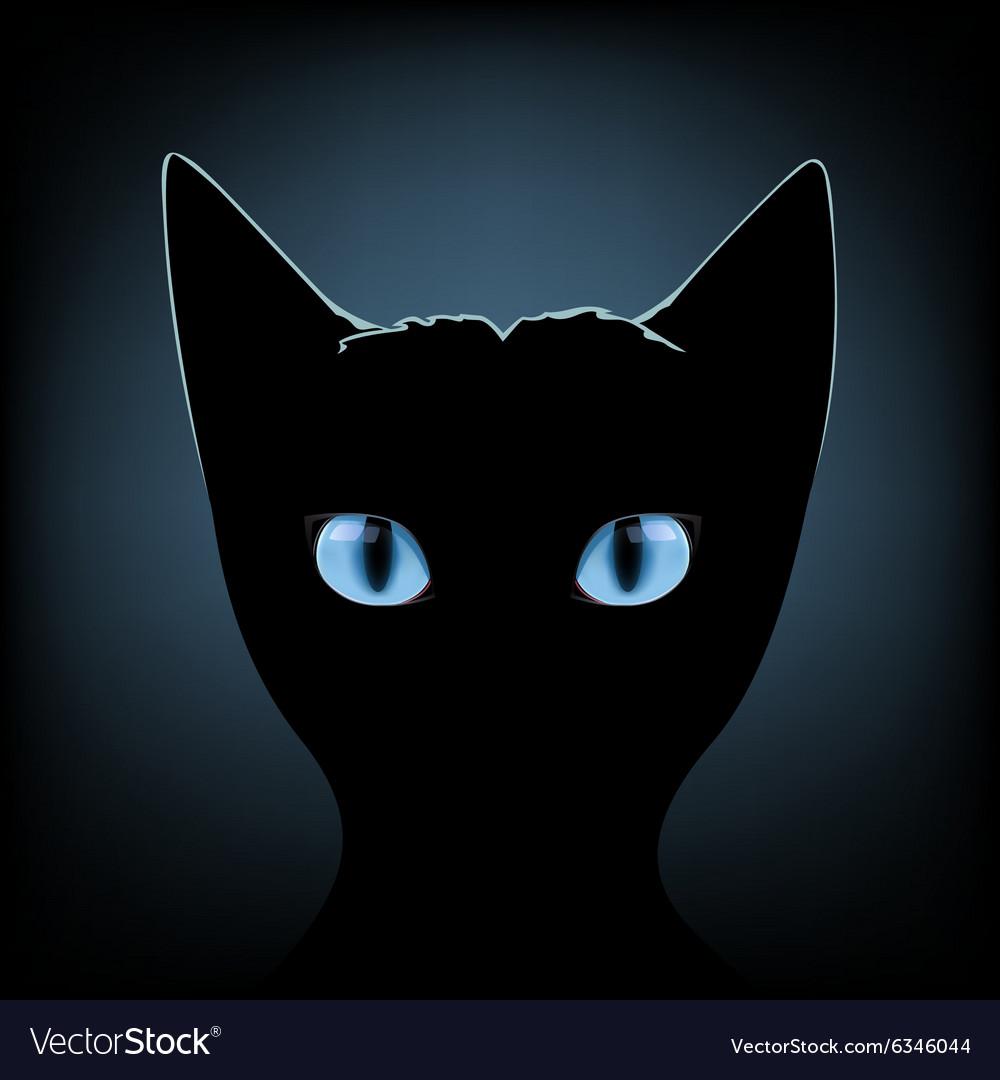 Black Cat Blue Eyes Royalty Free Vector Image Vectorstock
