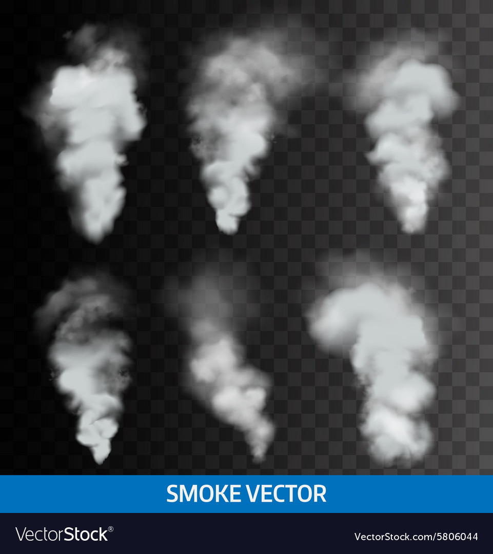 Realistic transparent smoke steam vector image