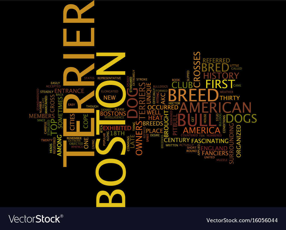 The boston terrier text background word cloud