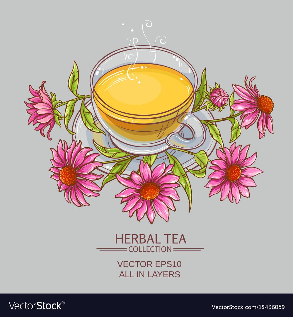 Cup of echinacea tea