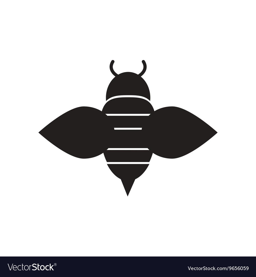 Flat icon in black and white style Honey bee vector image