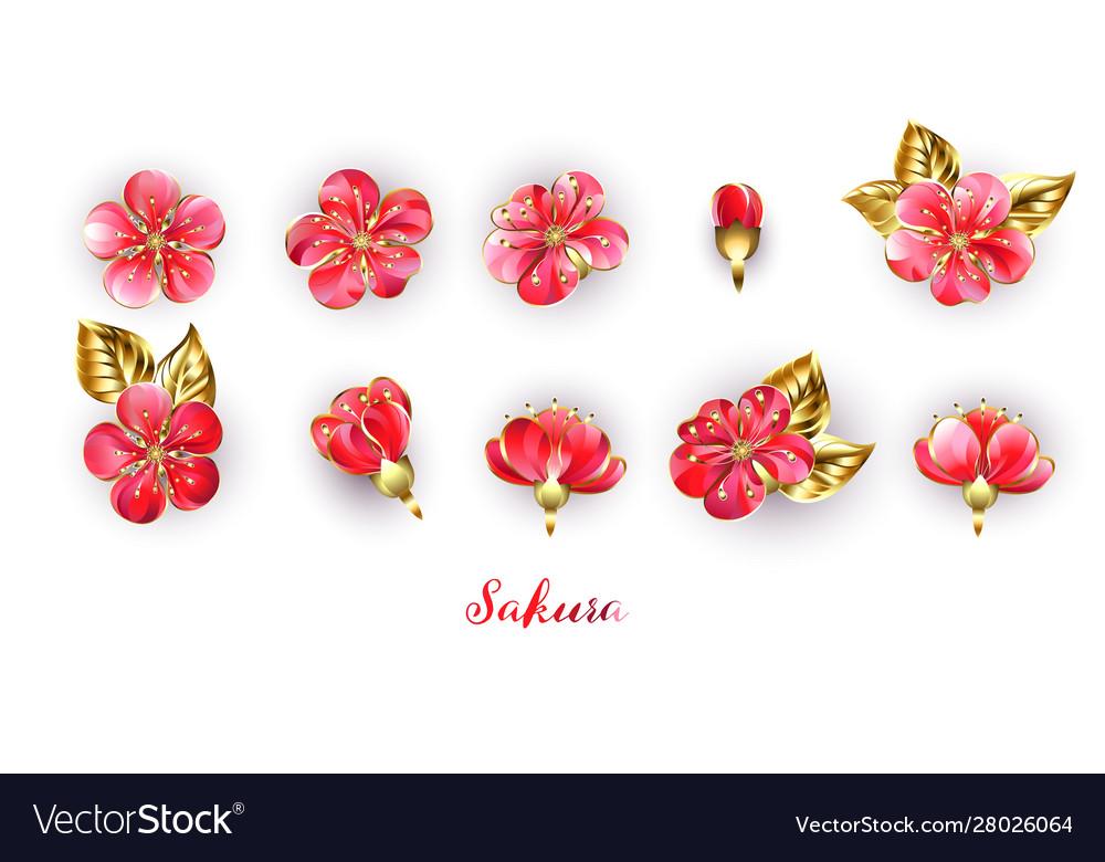 Set red sakura flowers