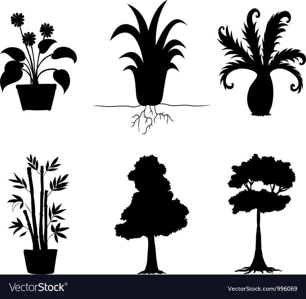 Tree Plants Silhouettes Collection