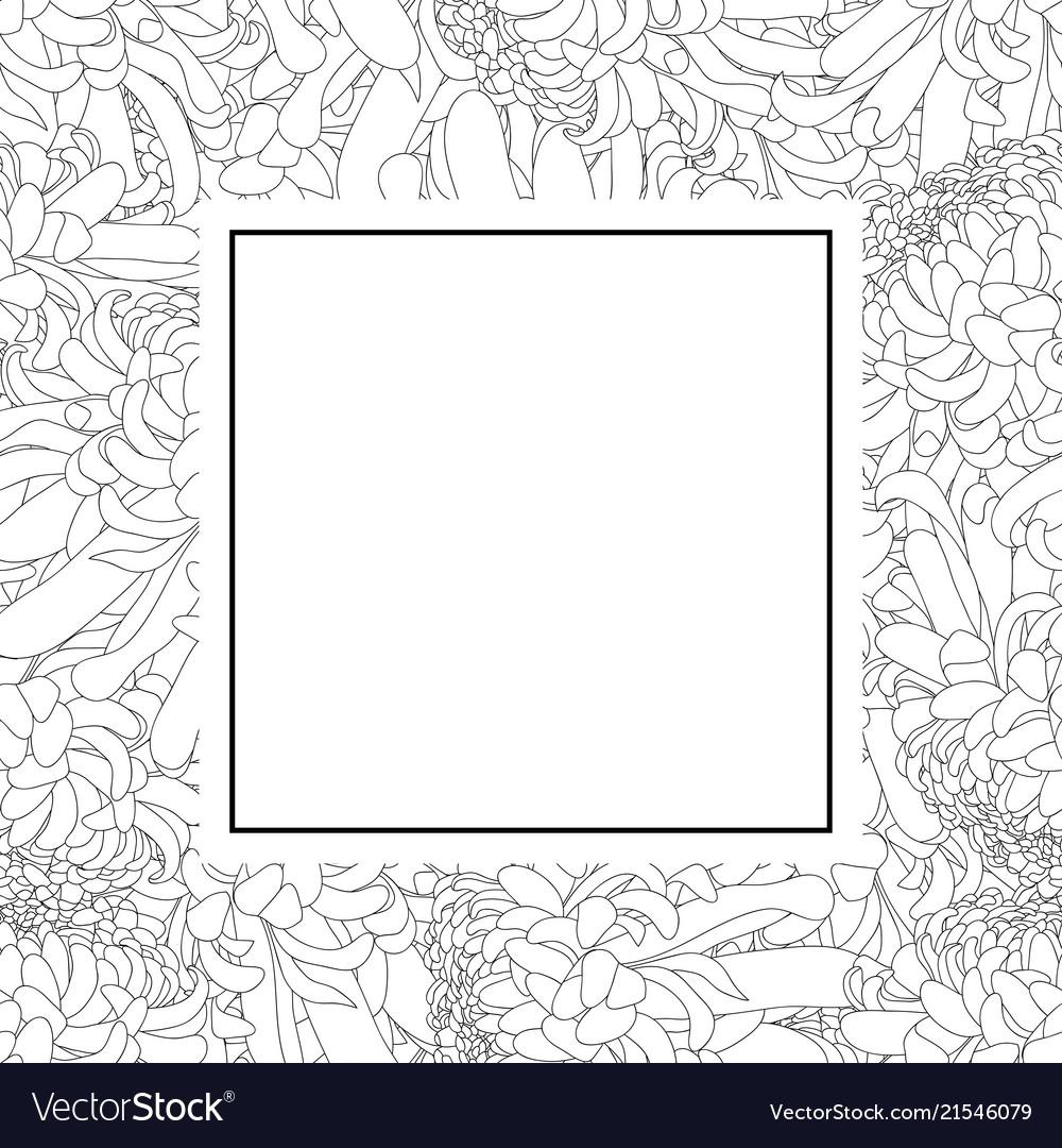 Chrysanthemum Outline Flower Banner Card Vector Image