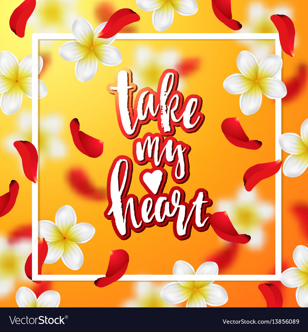 Hand drawn calligraphy take my heart vector image