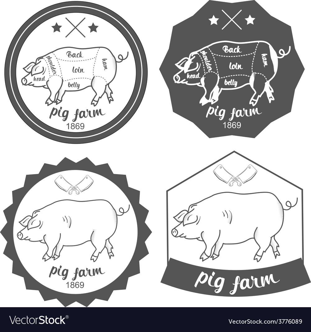 Set of logos pig farm in vintage style vector image