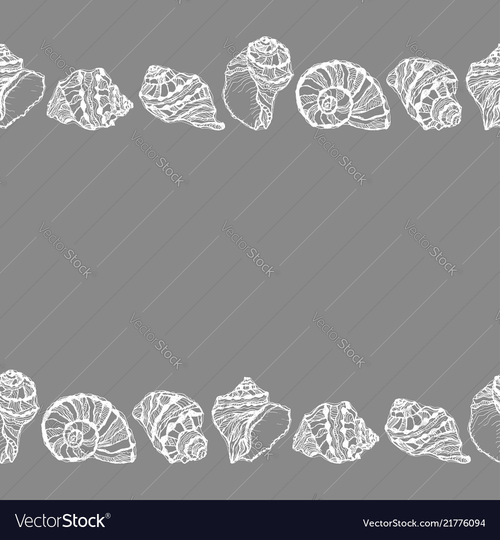 Seamless decorative border from white seashell