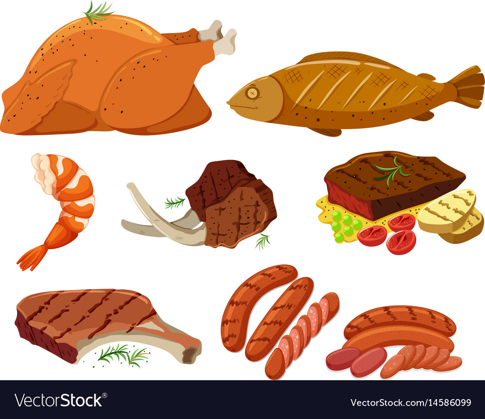 Different types of grilled meat vector image