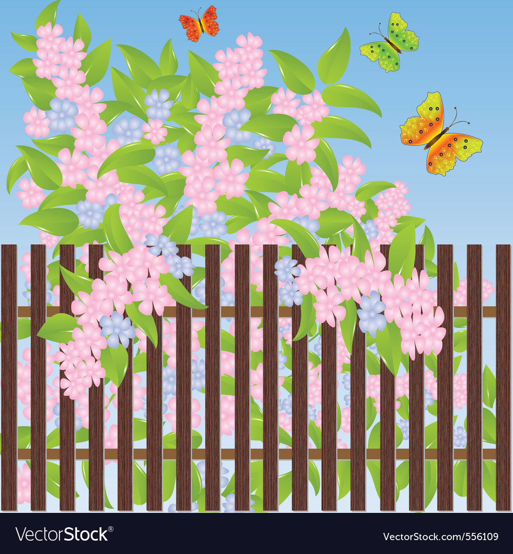 And Butterflies Colorful Fence Flowers With Vector Images 43 16 2 Butterfly New