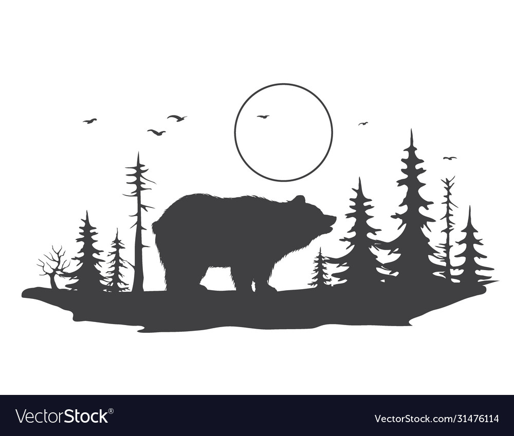 Bear in forest