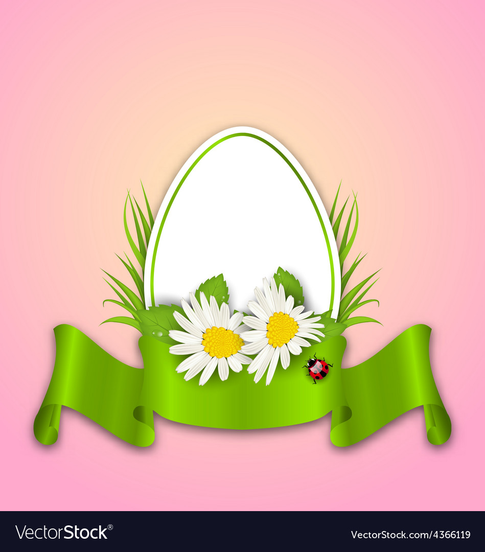 Easter paper egg with flowers daisy grass vector image