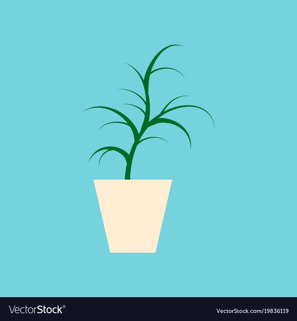 Icon in flat design flower in pot aloe