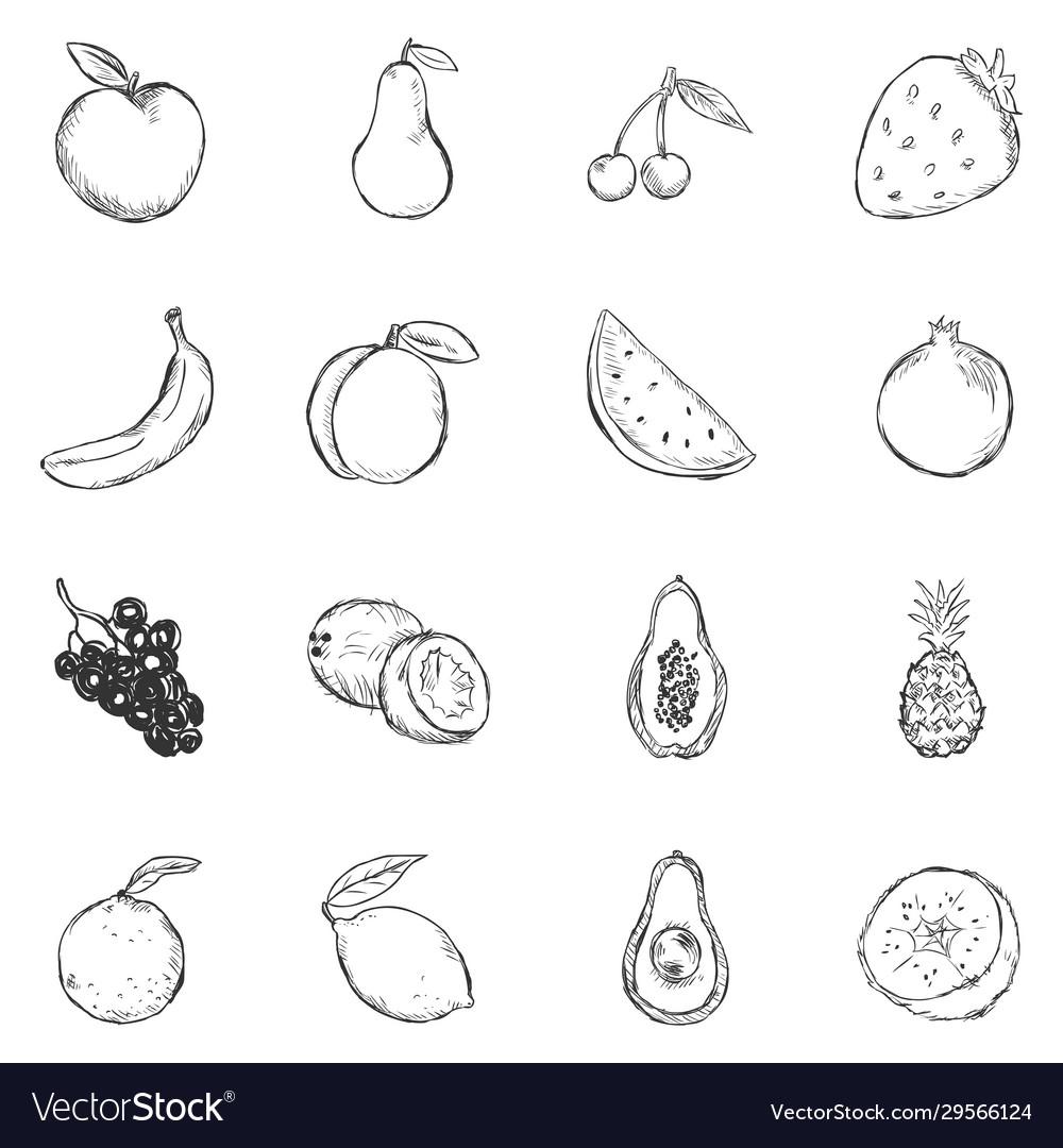 Set sketch fruits icons