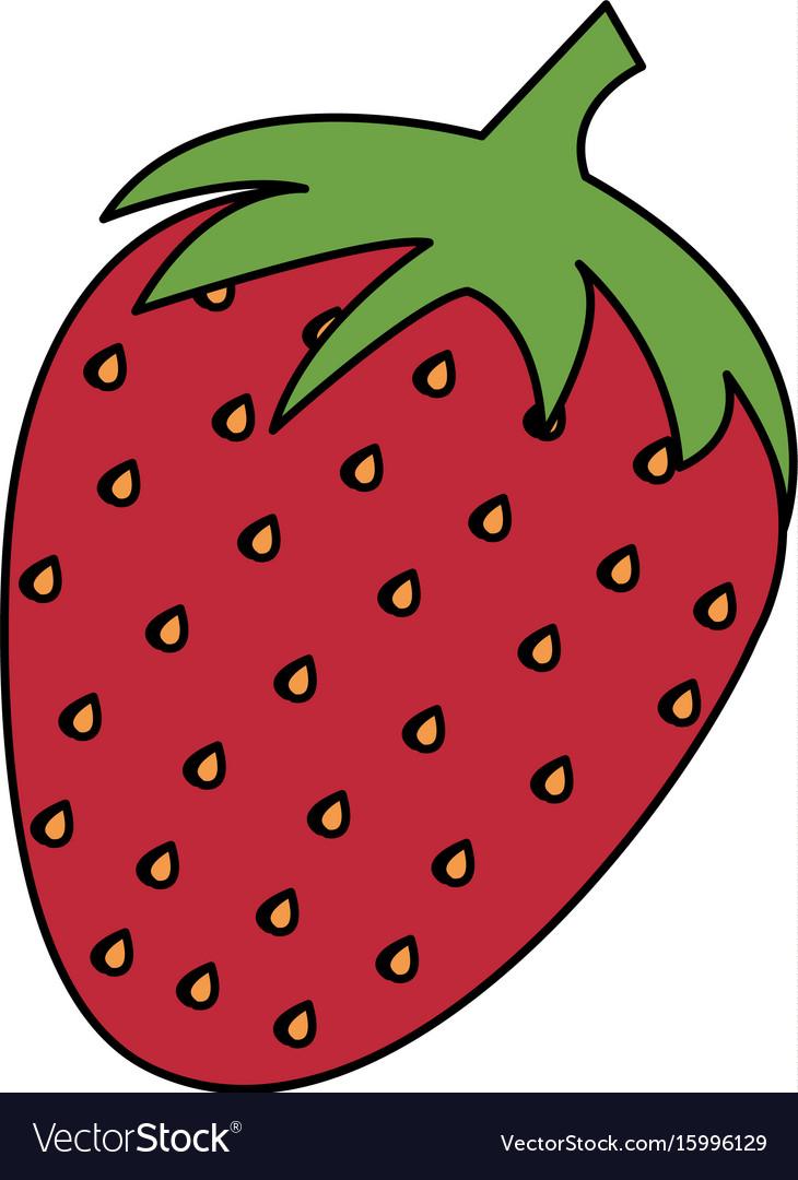 Strawberry fresh isolated icon