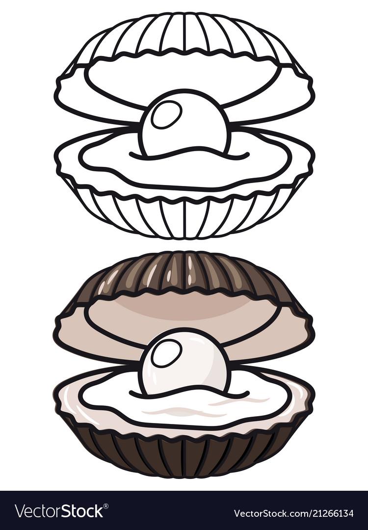 Cartoon and outline sea shell