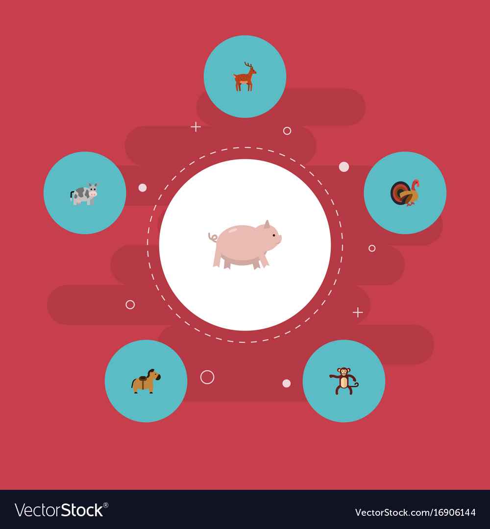 Flat icons swine kine chimpanzee and other