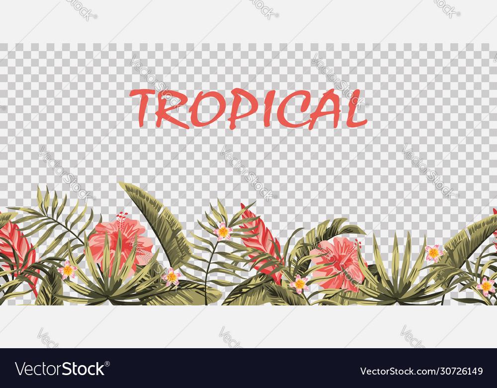 Seamless tropical border transparent background