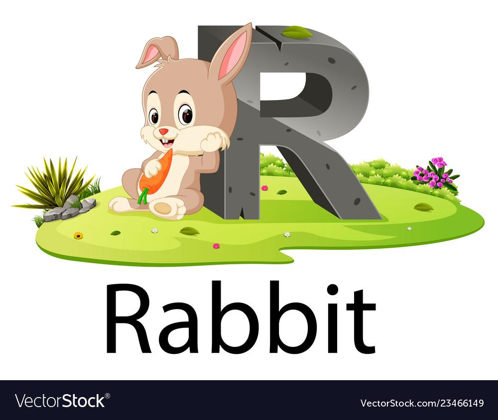 Zoo animal alphabet r for rabbit Royalty Free Vector Image
