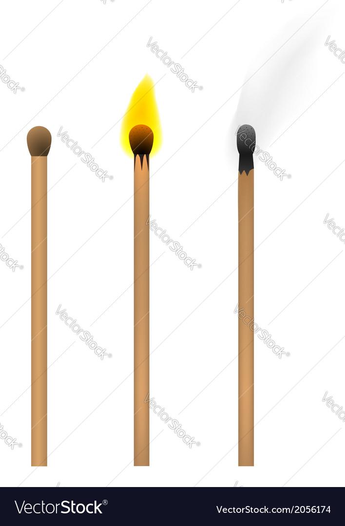 Set of burnt match