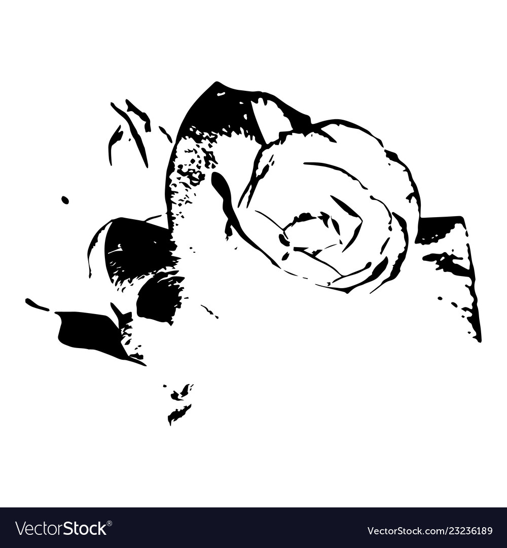 Black monochrome rose