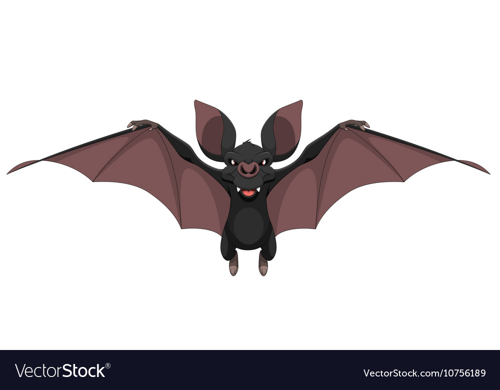Funny bat smiling vector image