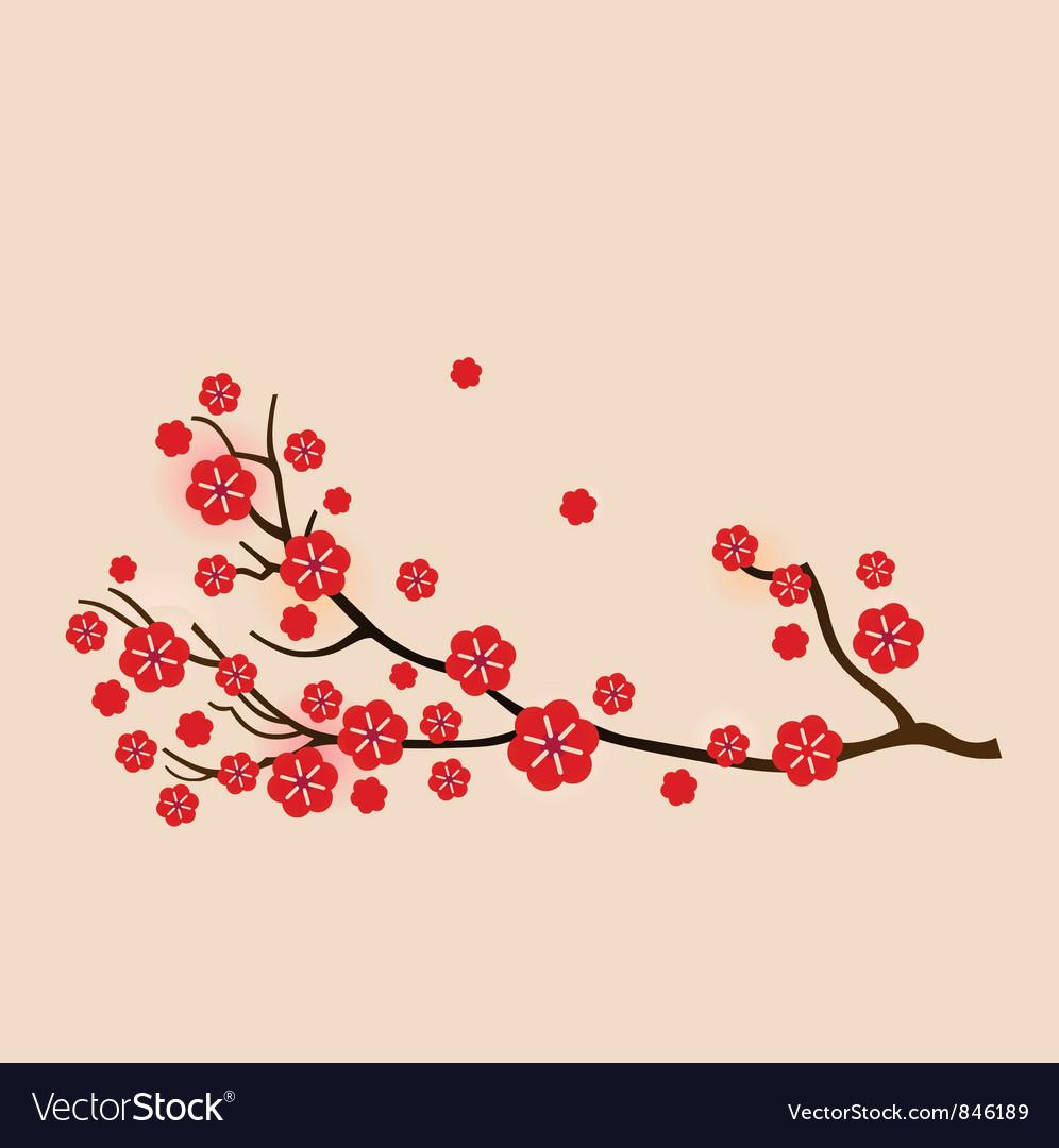 Red sakura vector image