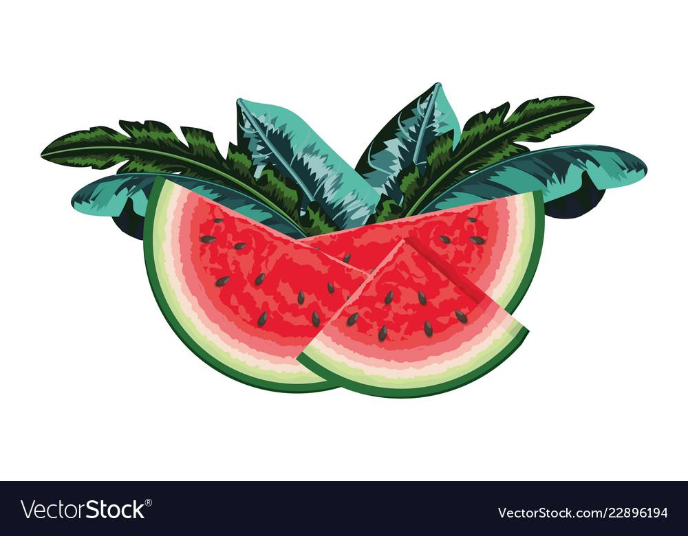 Tropical fruit cartoon