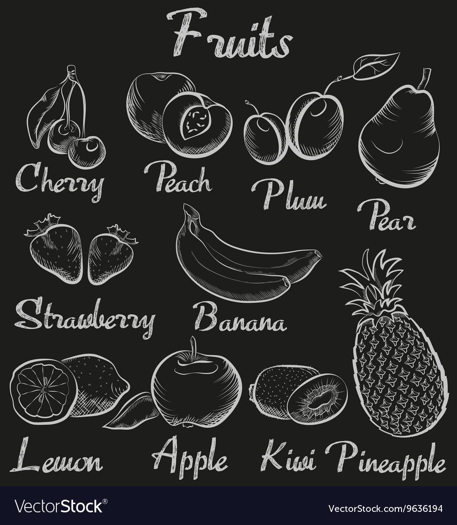Vintage fruits Hand-drawn chalk blackboard sketch