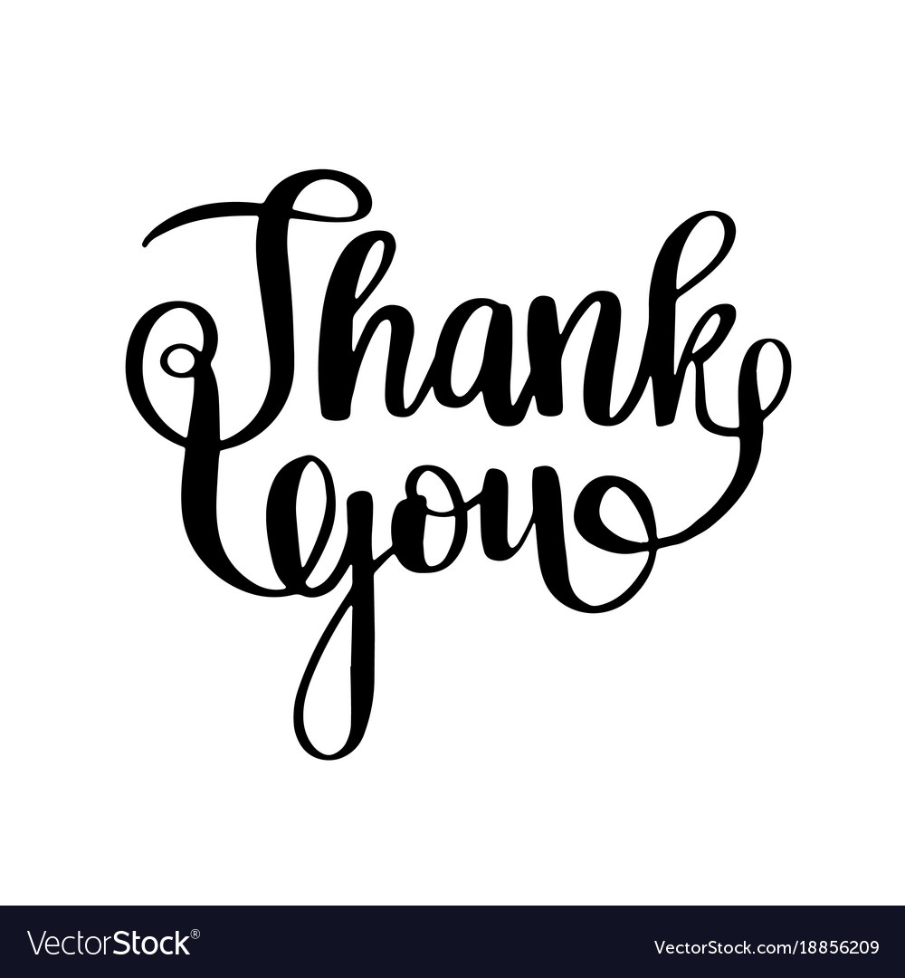 thank you calligraphy brush painted letters vector image rh vectorstock com vector letter w vector lettering