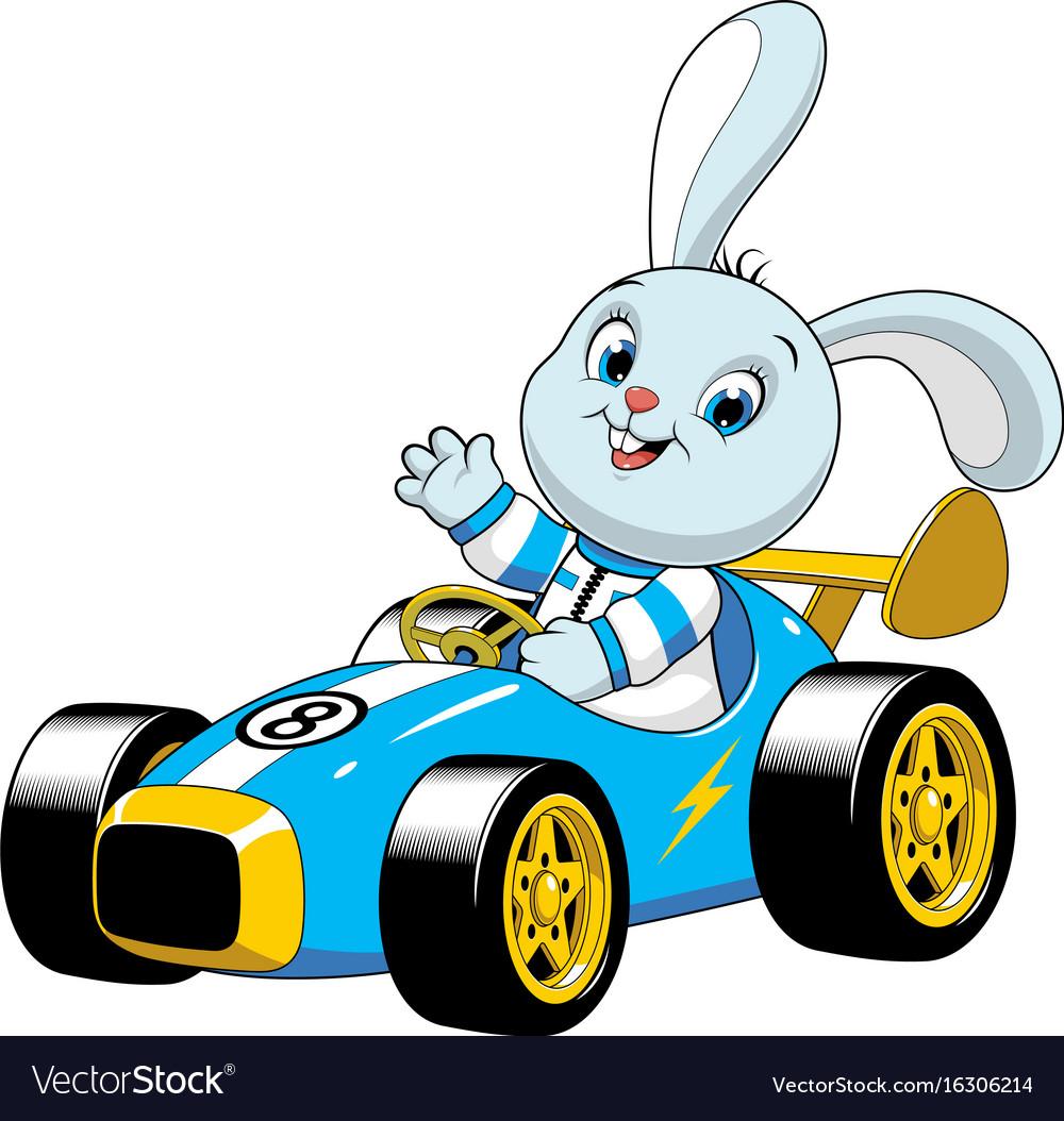 Bunny in a sport carxa