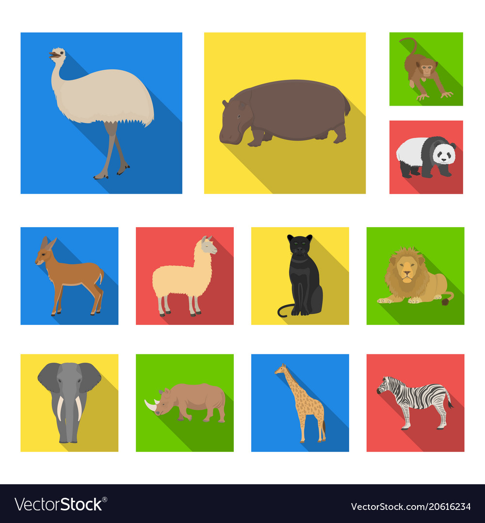 Different animals flat icons in set collection for