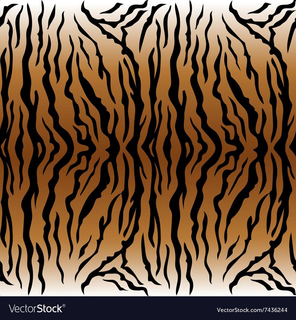 Animal pattern Tiger vector image